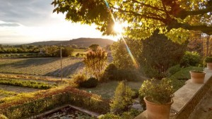 Back Garden at Sunset - Gîtes et Chambres d'hôtes - Les Terrasses du Soleil